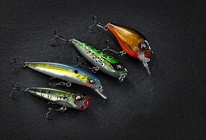 Esche per Canne da Pesca